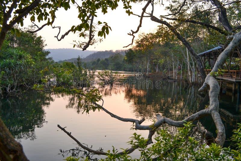 Отражения речной воды стоковые изображения rf