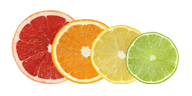 Отрежьте изолированные плодоовощи грейпфрута, апельсина, лимона и известки стоковые изображения