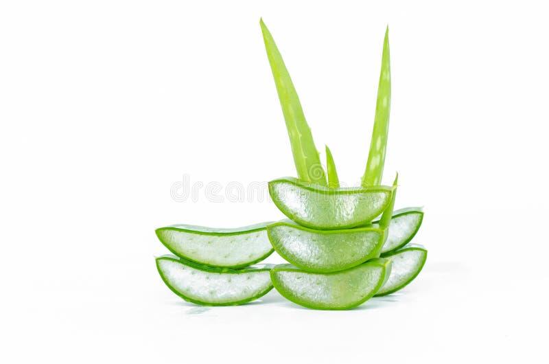 отрежьте лист vera алоэ свежие изолированные на белизне стоковое фото