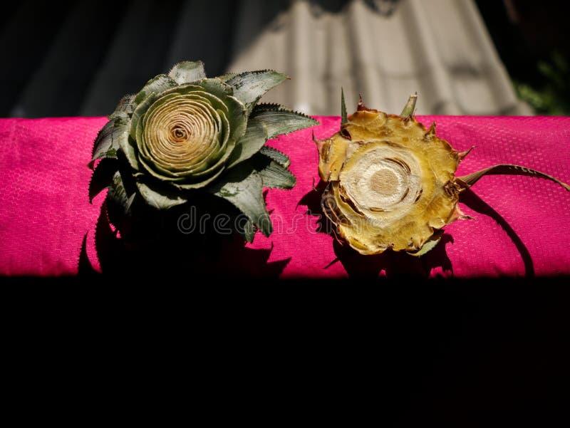 Отрежьте конец ананаса головной на ярком розовом пластичном листе циновки в стоковое фото rf