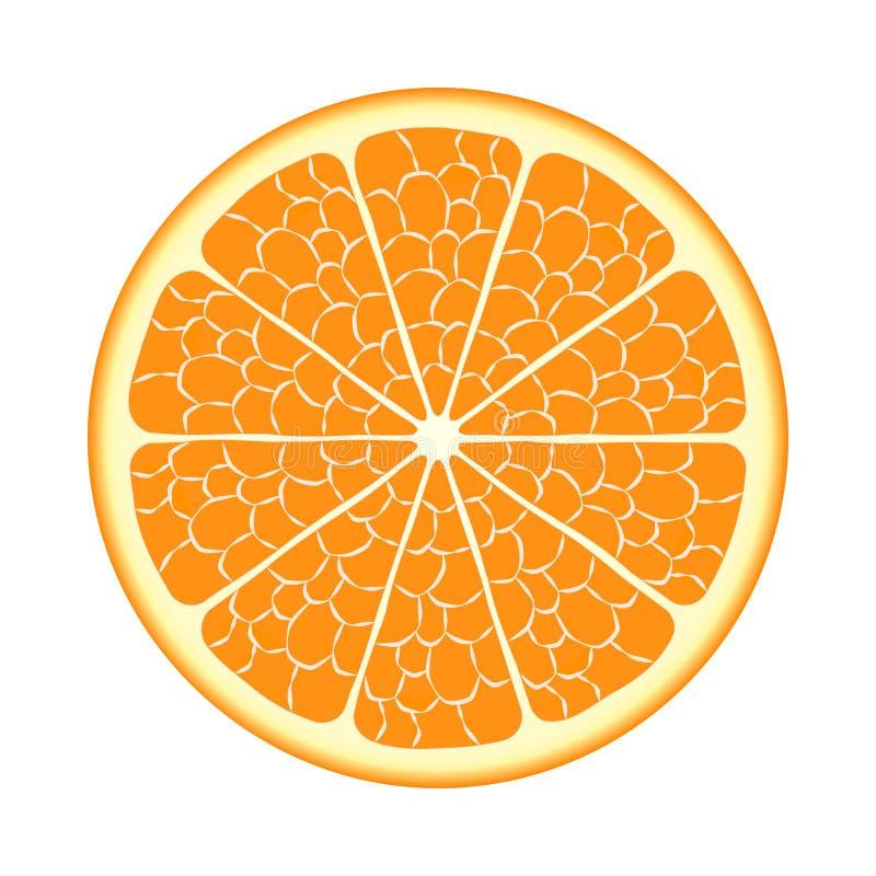 Отрежьте оранжевый плодоовощ бесплатная иллюстрация