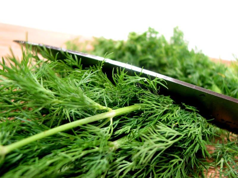 отрежьте траву укропа стоковое изображение rf