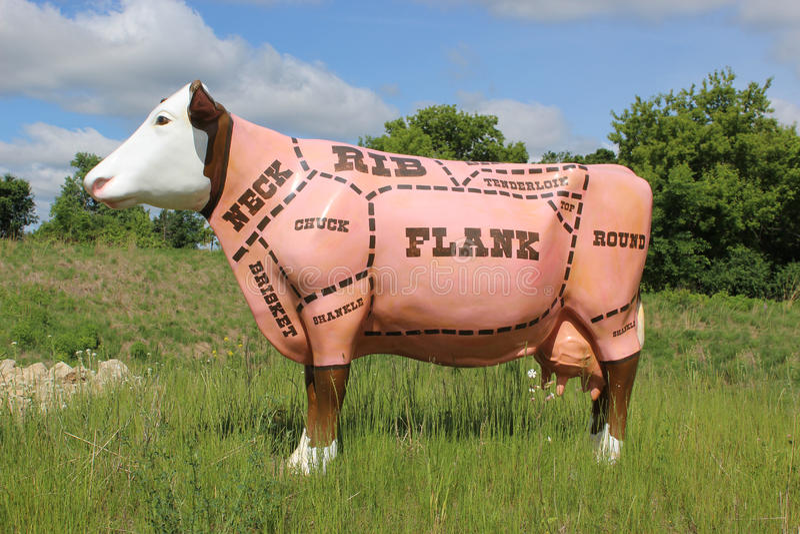 Отрезки мяса на корове стоковые фотографии rf