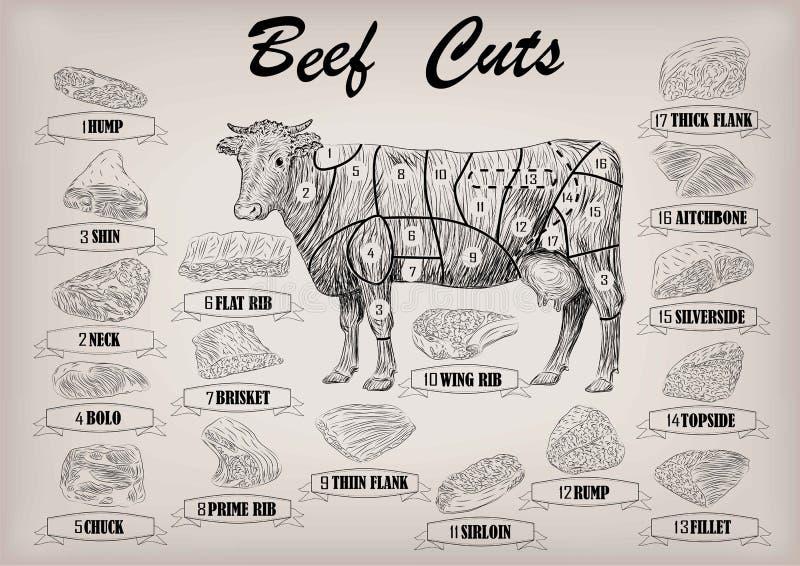 Отрезки туши быка коровы говядины все отрезали схему s infographics частей бесплатная иллюстрация