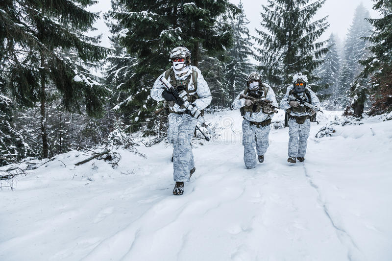 Отряд солдат в лесе зимы стоковое фото