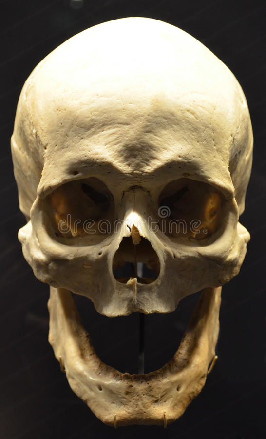 Отсутствие зубов стоковое фото