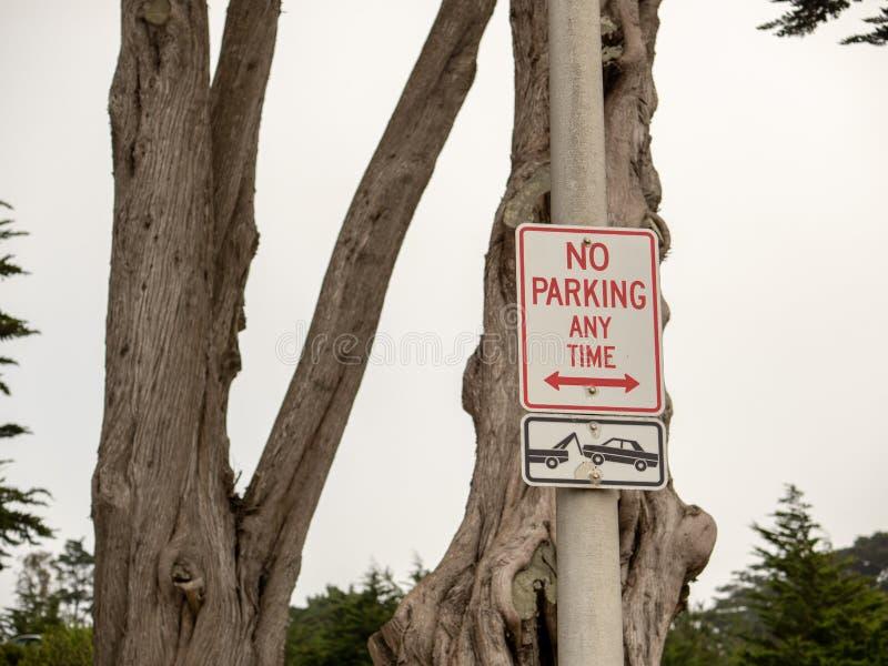 Отсутствие парковать в любое время знак внутри с буксировать символ в районе леса стоковое изображение