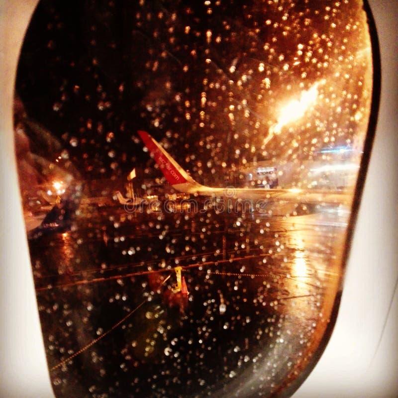 отсутствующая муха стоковая фотография rf
