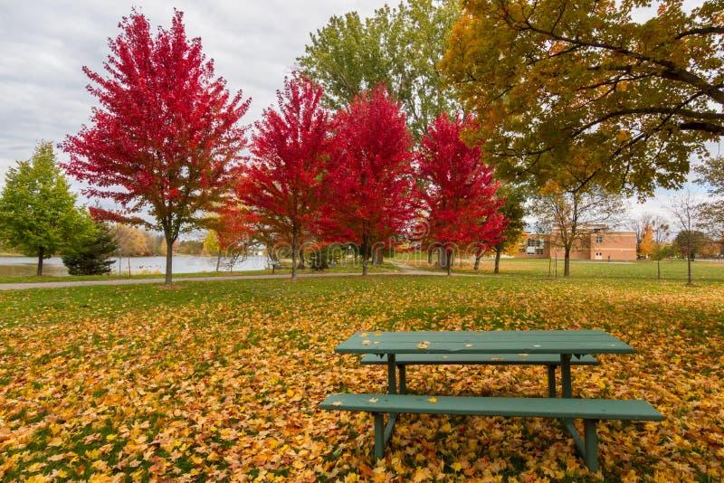 Оттава в осени, Канаде стоковые фотографии rf