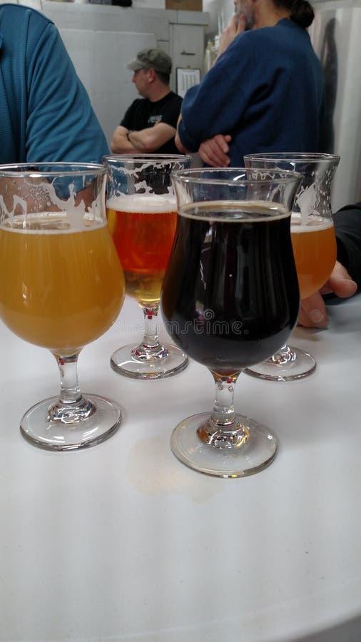 Оттенок brew стоковые изображения rf