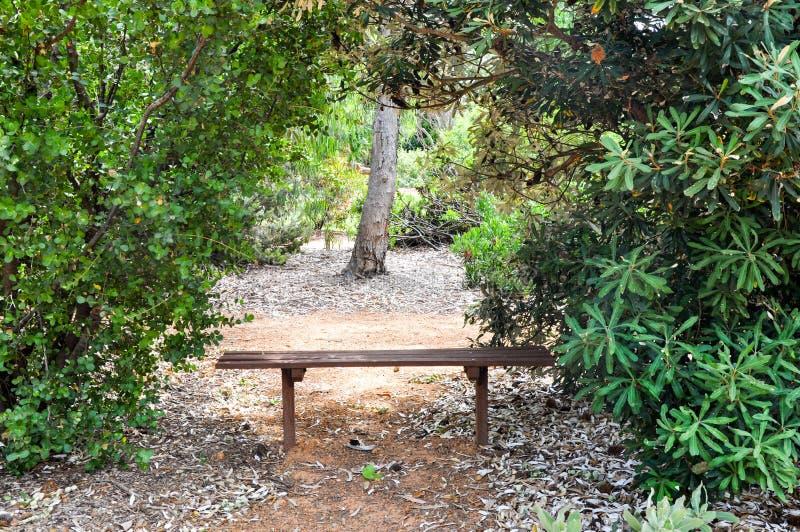 Отдыхать между деревьями стоковые изображения rf