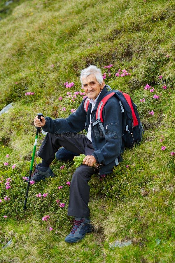 Отдыхать hiker старшего человека стоковые изображения rf