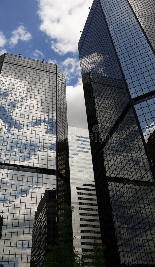 офис denver зданий стоковые изображения rf