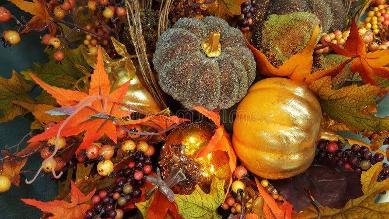 Оформление благодарения & хеллоуина с тыквами Падение, осень стоковые фотографии rf