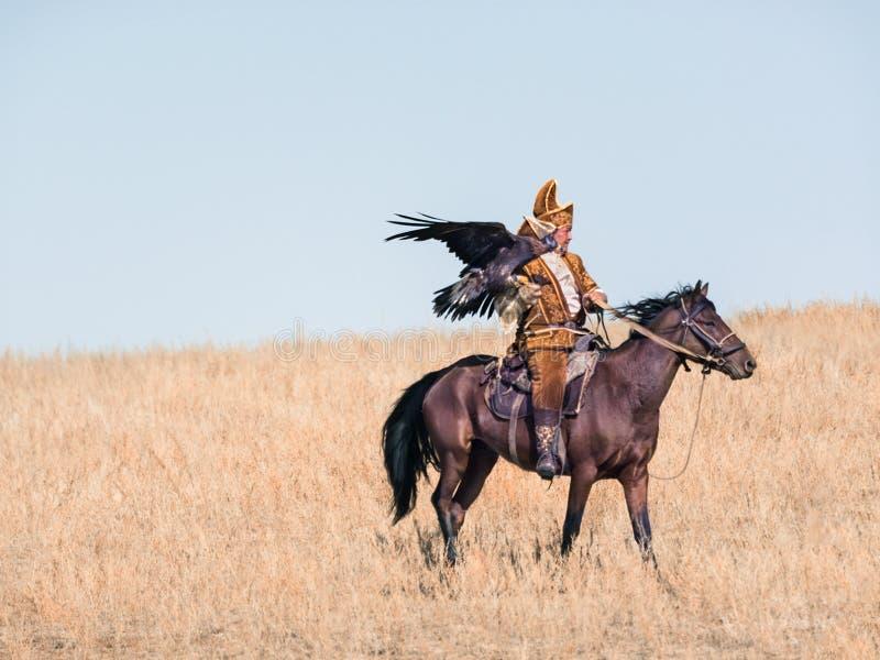 охотник орла золотистый Высушенный вверх по холму стоковая фотография