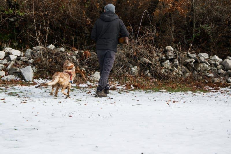 Охотник с винтовкой и его собакой сеттера звероловства в лесе стоковые изображения rf