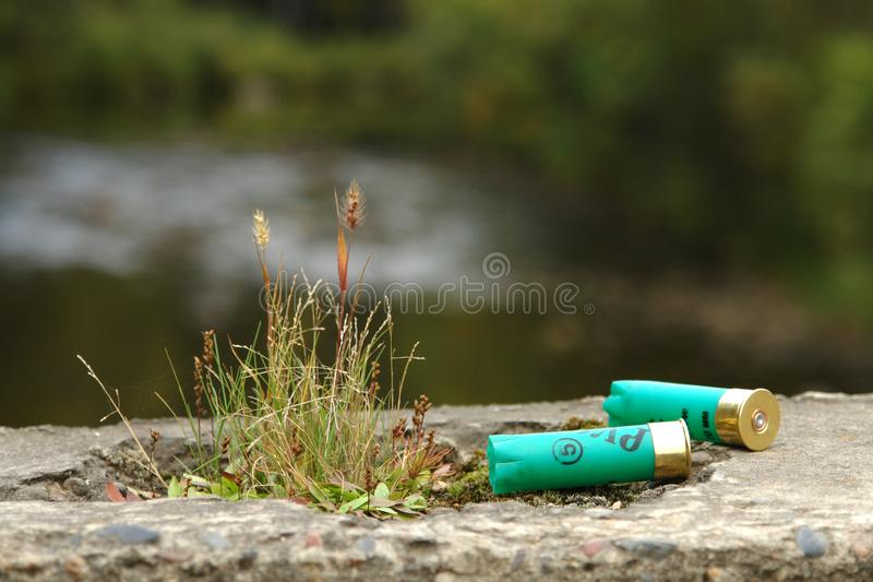 Охотясь патрон 2, остался на камне на лесе, с прудом в предпосылке Сезон звероловства стоковые фотографии rf