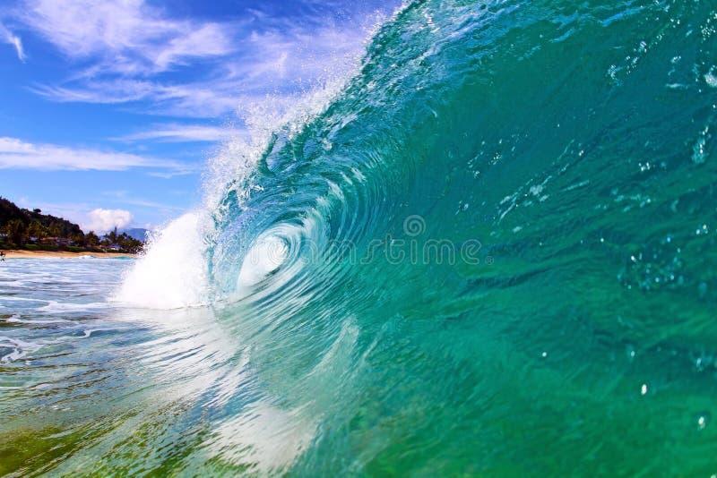 Охладите волну в Гаваи стоковое изображение rf