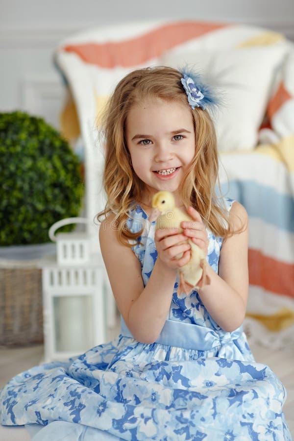 Очаровательная блондинка маленькой девочки в платье держа утят, в l стоковое изображение rf