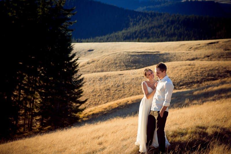 Очаровательные пары свадьбы стоя и усмехаясь на горном пике Медовый месяц в Альпах стоковое фото rf