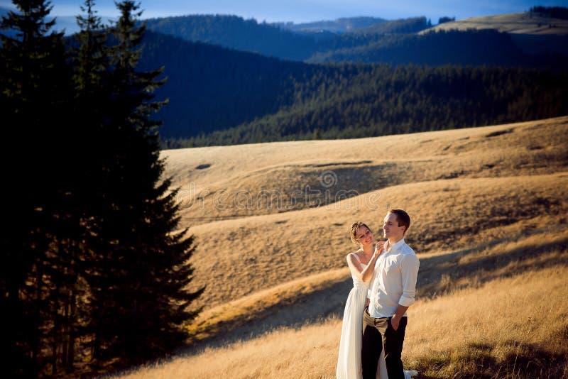 Очаровательные пары свадьбы стоя на горном пике Медовый месяц в Альпах стоковые фотографии rf