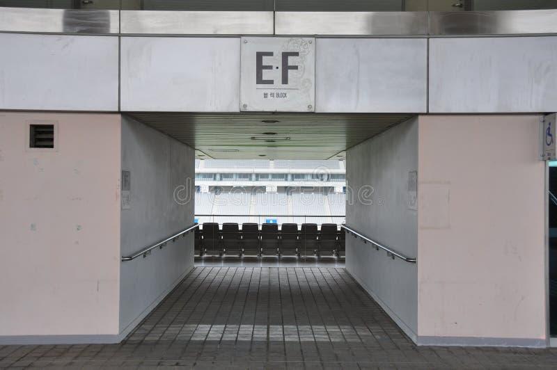 очаровывает футбольный стадион стоковое фото rf