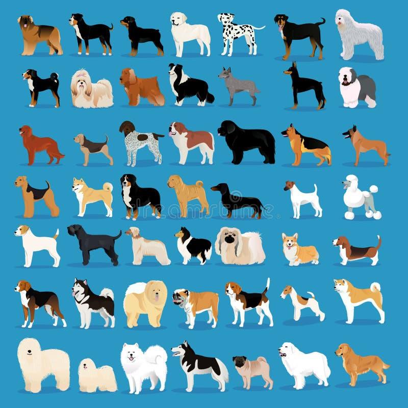Очень большой комплект собак иллюстрация вектора