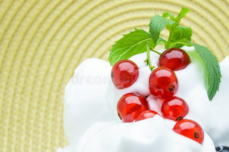 Очень вкусное мороженое с красной смородиной Зрелое красной мороженое смородины и ванили на здоровое освежая холодное лето стоковая фотография rf
