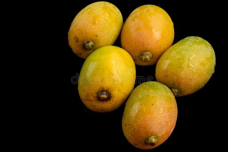 Очень вкусные естественно созретые манго r стоковые фото