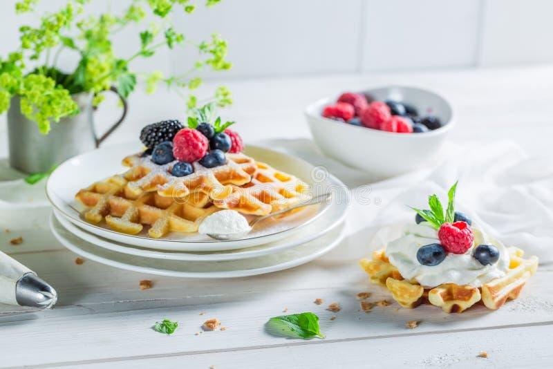 Очень вкусные и сладостные waffles с плодоовощами ягоды и взбитой сливк стоковые изображения