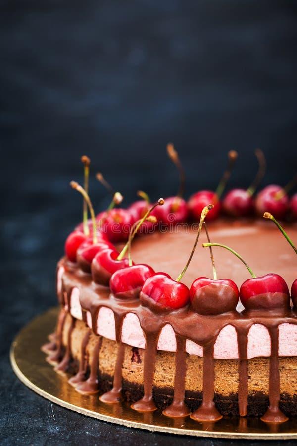Очень вкусный десерт чизкейка шоколада и вишни украшенный с стоковые фотографии rf