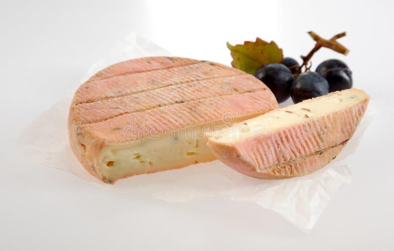 Очень вкусный сметанообразный мягкий ароматичный французский сыр стоковые изображения rf
