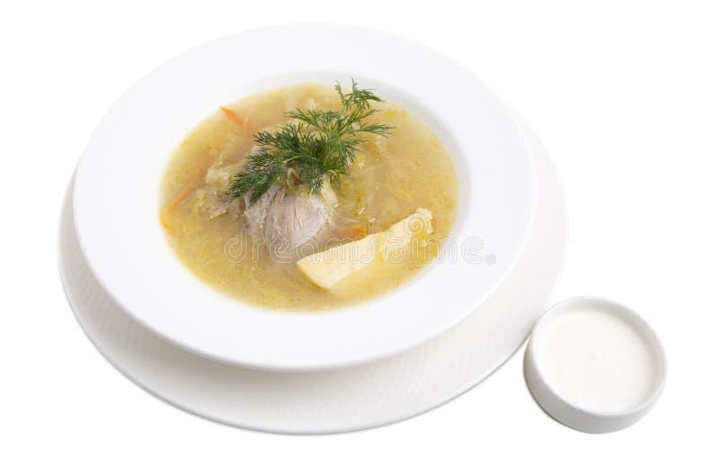 Очень вкусный суп утки стоковые изображения