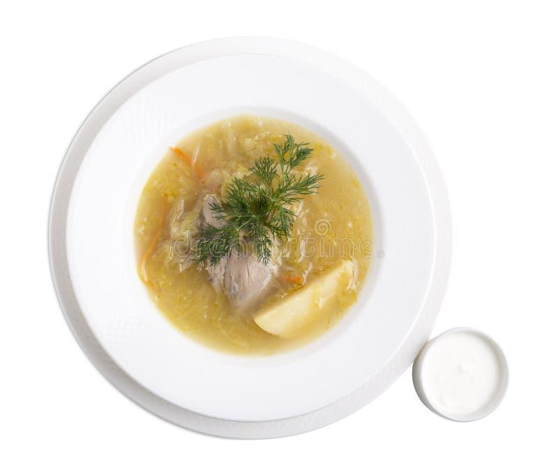 Очень вкусный суп утки стоковое фото rf