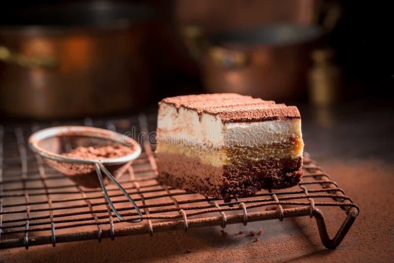 Очень вкусный торт тирамису с бурым порохом, mascarpone и печеньями стоковые изображения