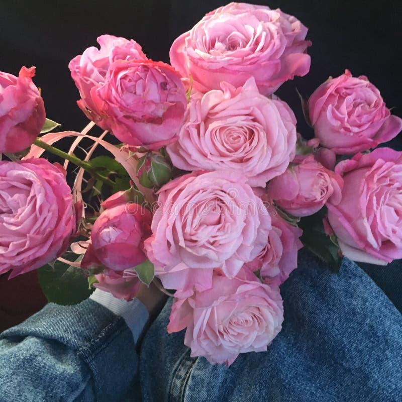 Очень красивые цветки стоковое изображение rf