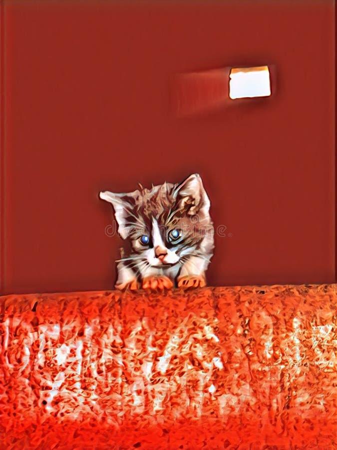Очень милый котенок, который потерял, сиротливый и в тревоге стоковая фотография rf