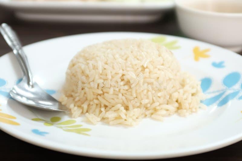 Очень очень очень очень вкусный рис стоковые изображения rf