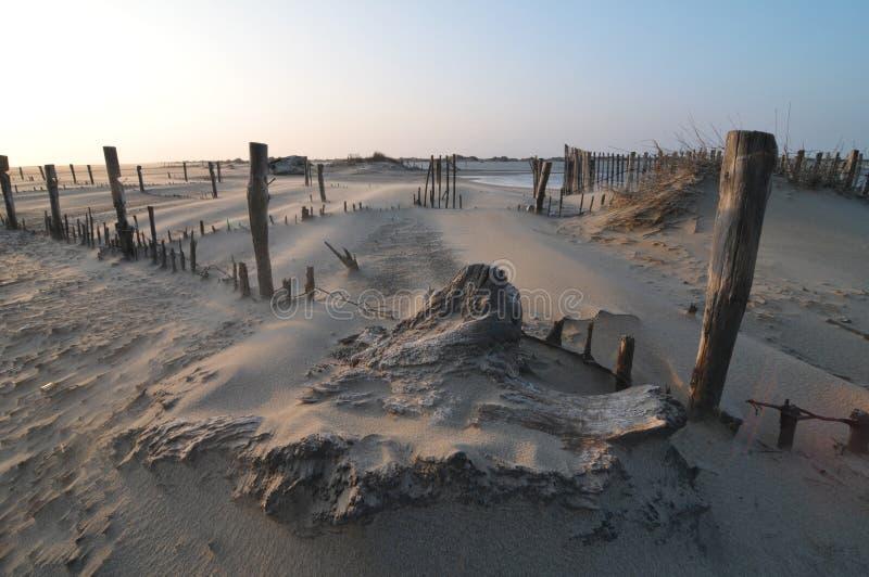 Очень сильный ветер на пляже стоковая фотография