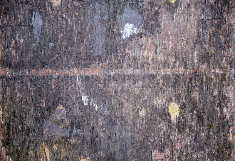очень старая серая деревянная предпосылка стоковое изображение rf