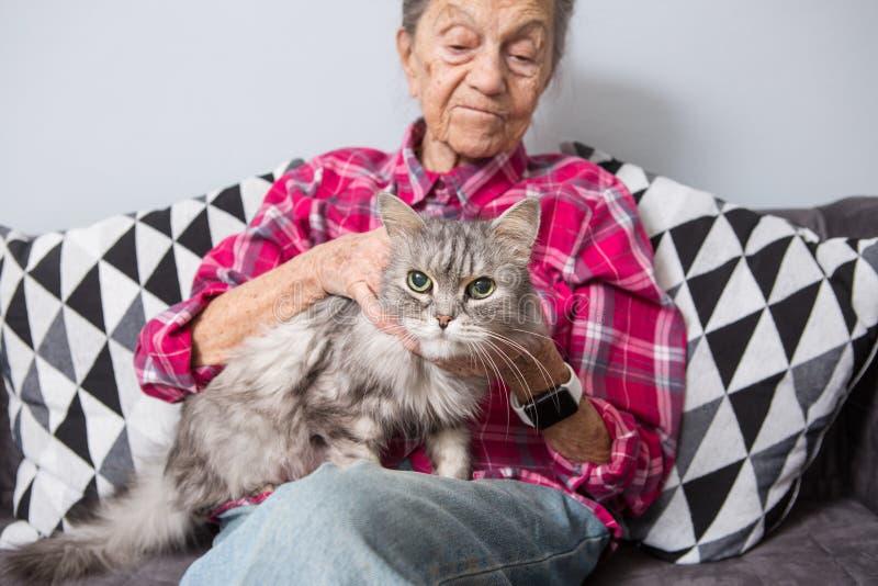 Очень старая старшая кавказская бабушка с серыми волосами и глубокими морщинками сидит дома на кресле в джинсах и a стоковые фото