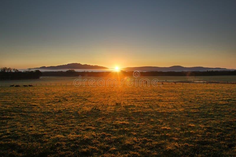Очень яркий восход солнца над горой стоковые изображения