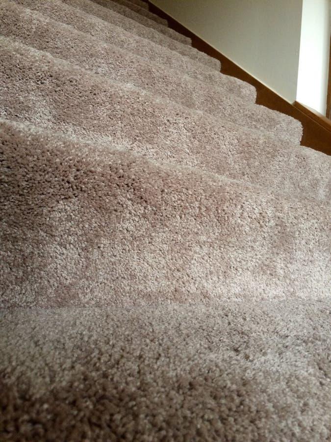 Очистите ковер плюша на лестницах стоковое фото
