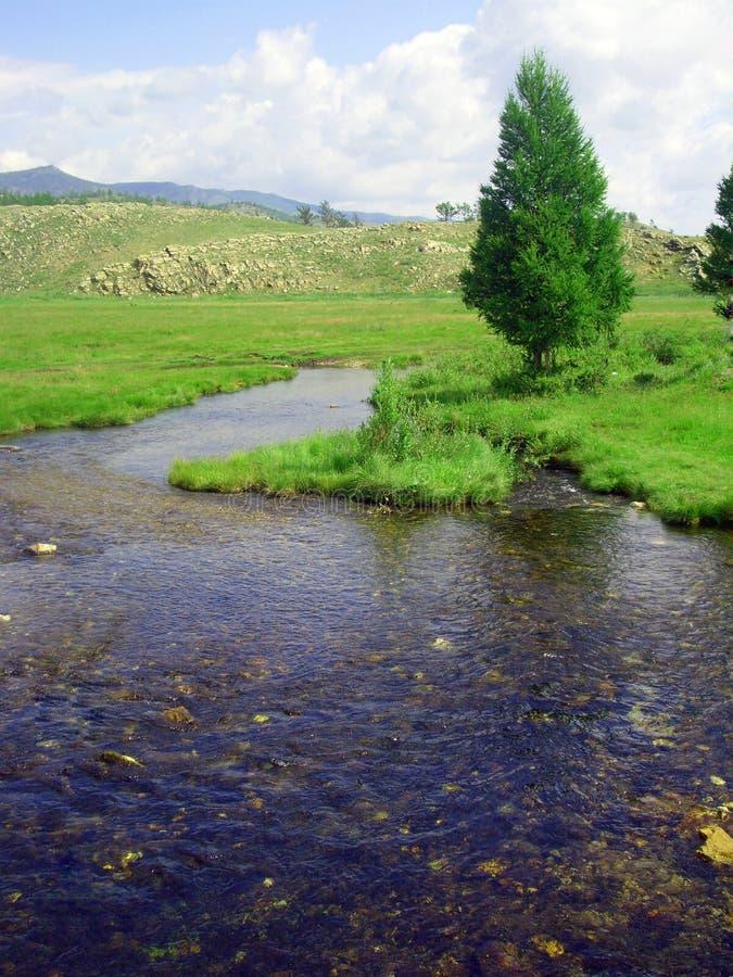 очистьте реку стоковое изображение rf