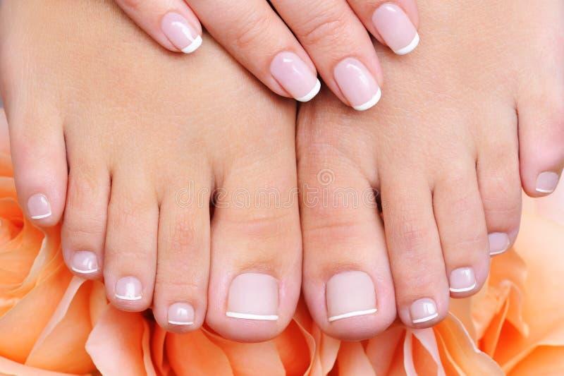 очистьте pedicure ног женское французское чисто стоковая фотография rf
