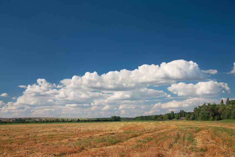 Очищенное поле, сельский ландшафт стоковое фото