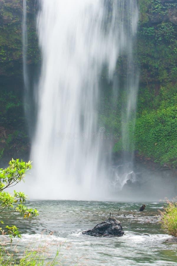 Очищенность природы, взгляда пейзажа свежего водопада в утре Водопад E-Tu Itou ребенка падает над скалой и тропическими заводами стоковое изображение