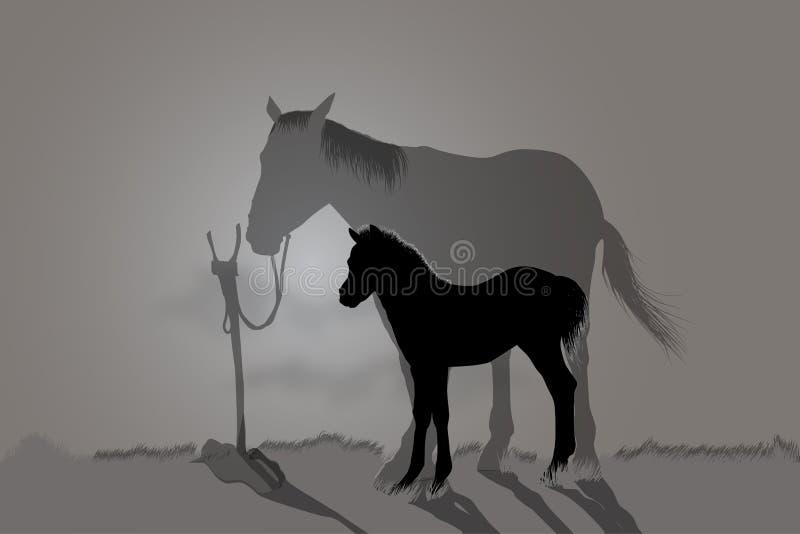 2 лошади иллюстрация вектора