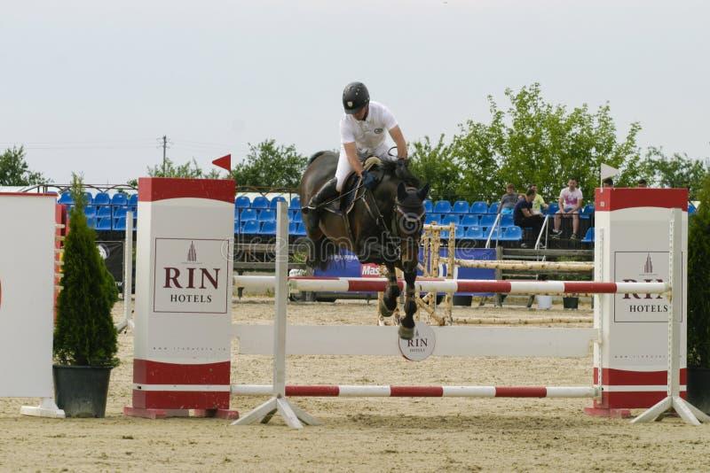 лошадь скачет мое портфолио к гостеприимсву стоковая фотография rf