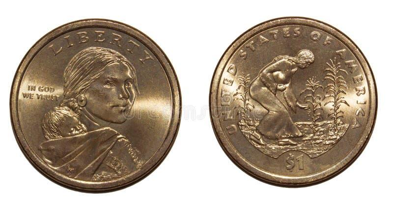 1 доллар Америка стоковые фотографии rf